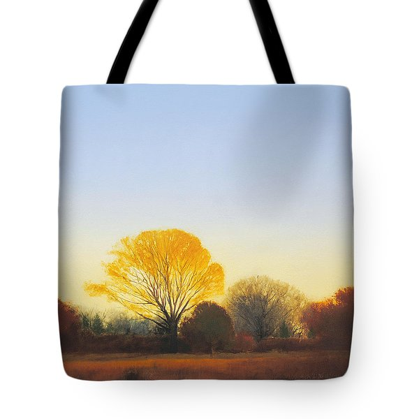 Red Tailed Hawk Sold Tote Bag