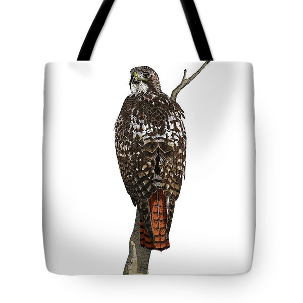Red-tailed Hawk - Color Tote Bag