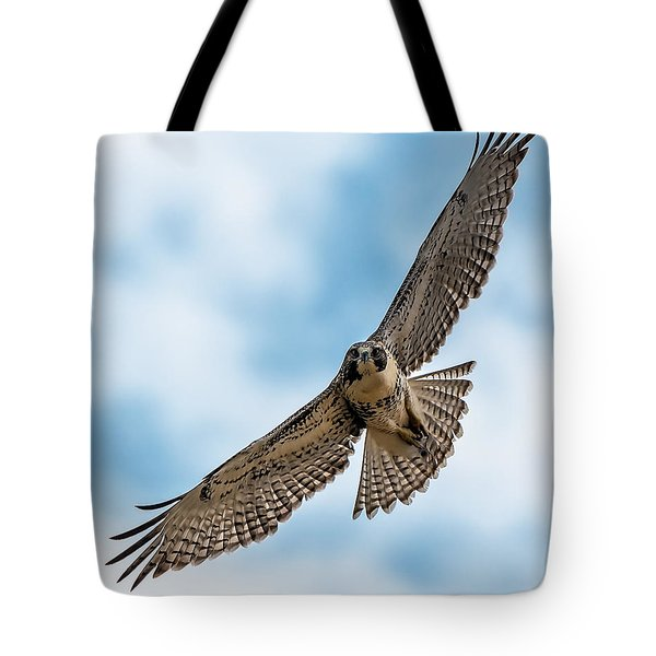 Red-tailed Hawk Coming At Me Tote Bag by Stephen  Johnson
