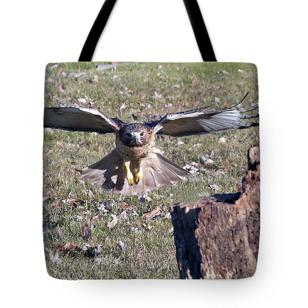 Red Tailed Hawk Flying In Tote Bag