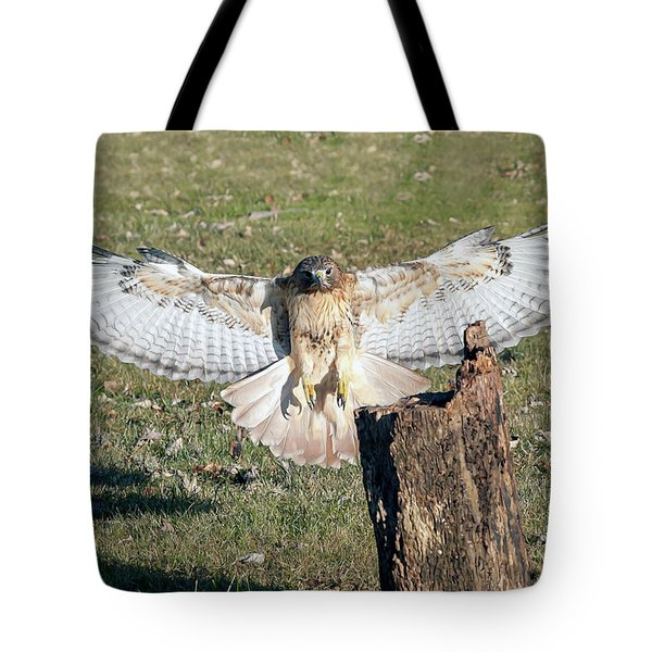 Red Tailed Hawk Flying To Land On Log Tote Bag