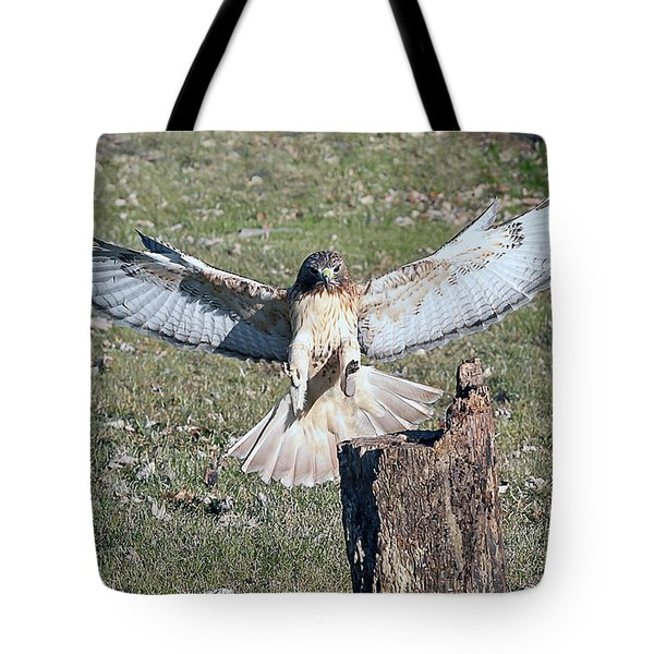 Red Tailed Hawk Getting Ready To Land On Log Tote Bag