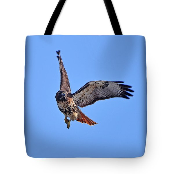 Red-tailed Hawk In Flight Tote Bag