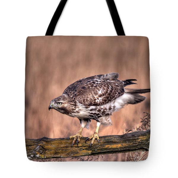 Red-tailed Hawk On A Fence Tote Bag
