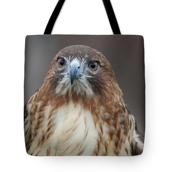 Tote Bag featuring the photograph Red Tailed Hawk by Richard Bryce and Family