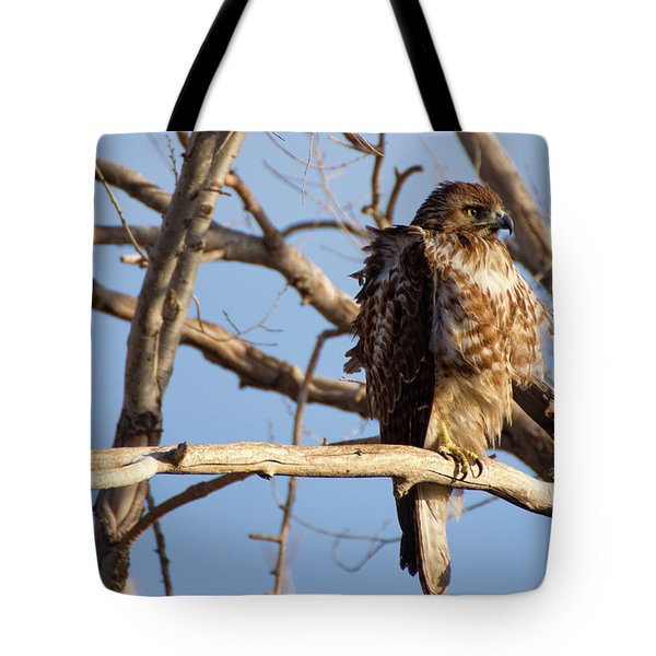 Red Tailed Tote Bag