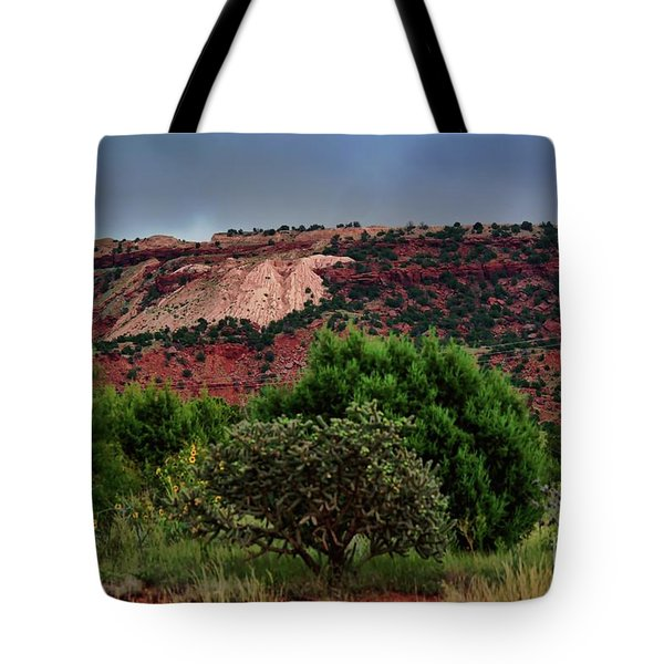 Tote Bag featuring the photograph Red Terrain - New Mexico by Diana Mary Sharpton