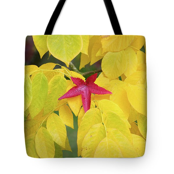 Tote Bag featuring the photograph Red by Tim Gainey