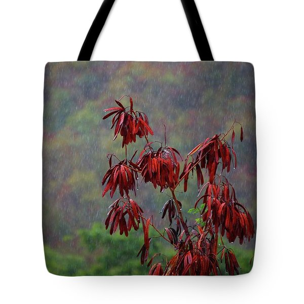 Red Tree In The Rain Tote Bag