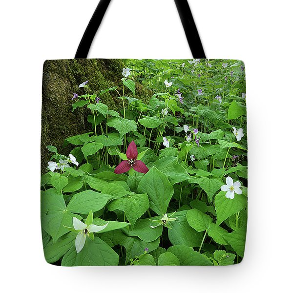 Red Trillium At Center Tote Bag
