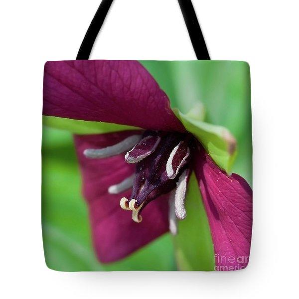 Red Trillium.. Tote Bag by Nina Stavlund