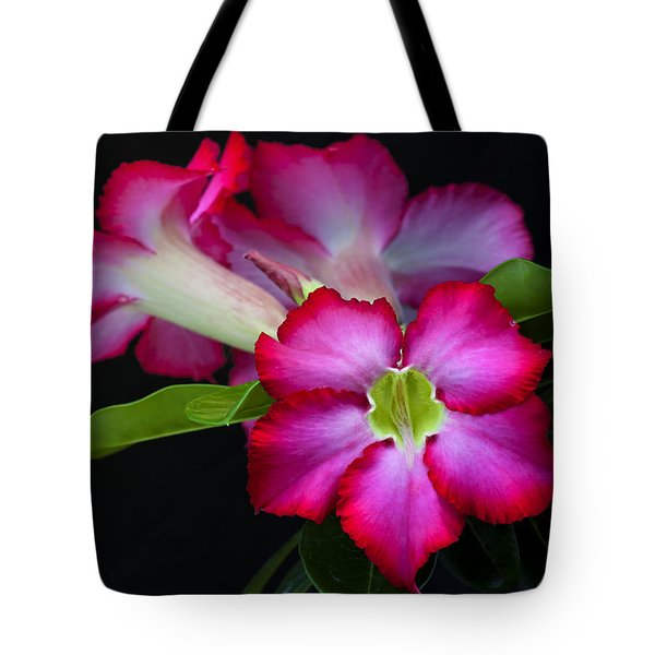Tote Bag featuring the photograph Red Tropical Flower by Ken Barrett