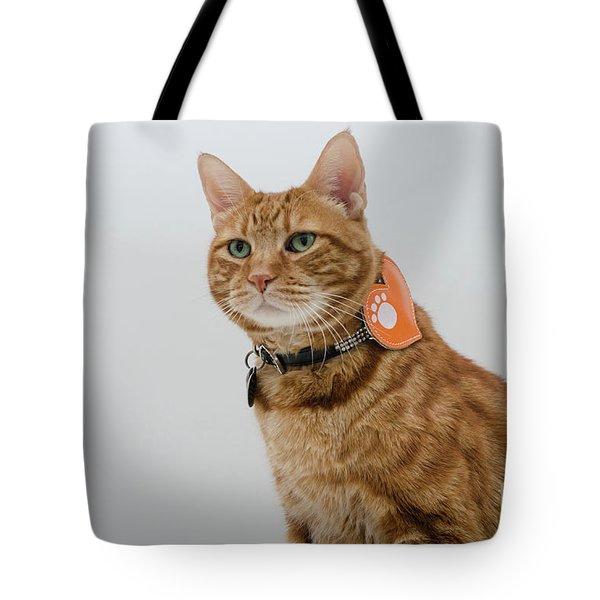 Red Tubby Cat Tabasco Pet Tote Bag