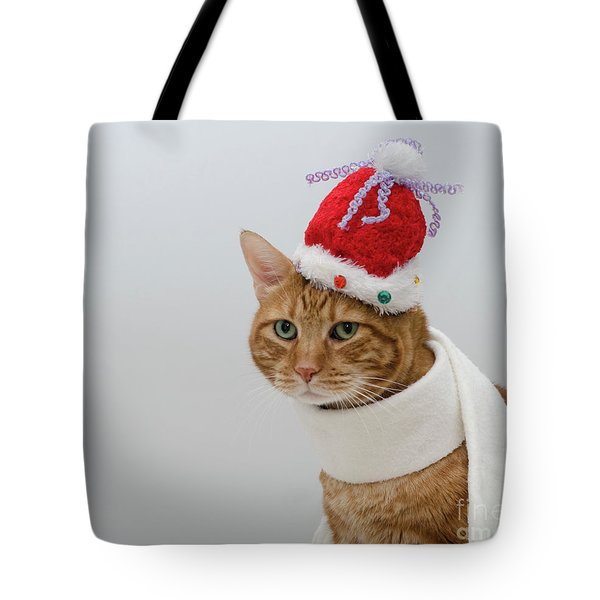 Red Tubby Cat Tabasco Christmas Hat Tote Bag
