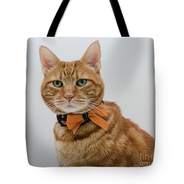 Red Tubby Cat Tabasco Halloween Tote Bag
