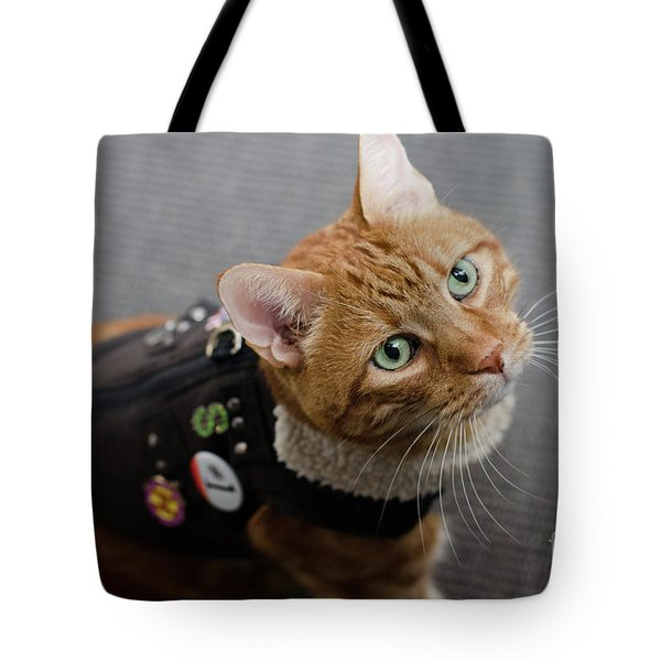 Red Tubby Cat Tabasco Jacket Tote Bag
