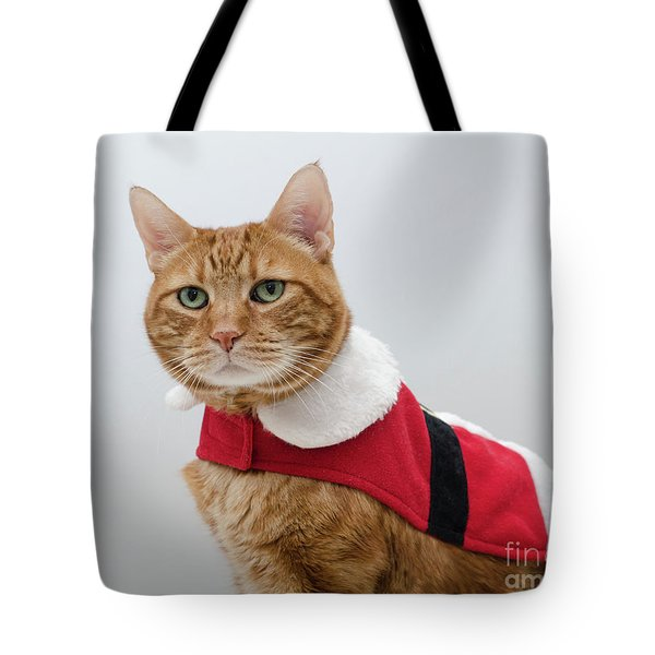 Tote Bag featuring the photograph Red Tubby Cat Tabasco Santa Clause by Irina ArchAngelSkaya
