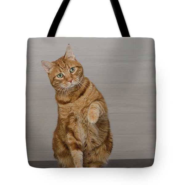 Red Tubby Cat Tabasco Waiving Tote Bag