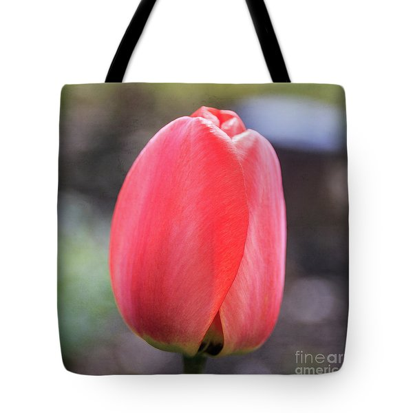 Tote Bag featuring the photograph Red Tulip Square by Edward Fielding
