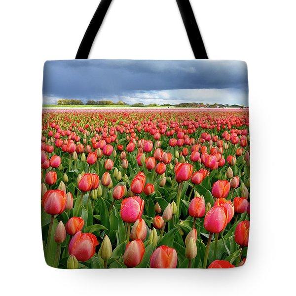 Red Tulip Field Tote Bag