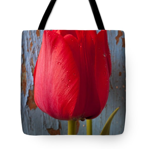 Red Tulip Tote Bag by Garry Gay
