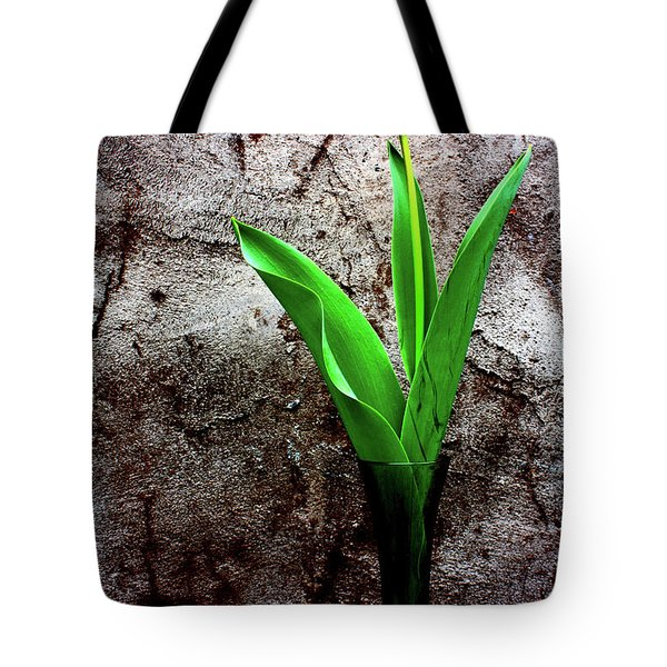 Red Tulip Tote Bag by Gray  Artus