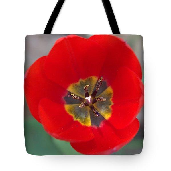 Red Tulip In 3d Tote Bag by Liz Allyn