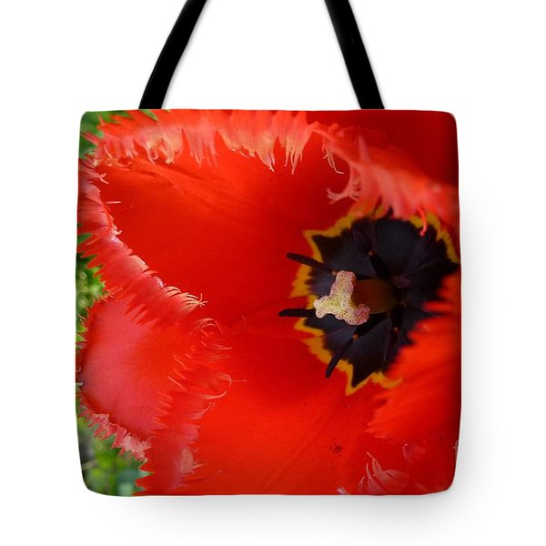 Tote Bag featuring the photograph Red Tulip by Jean Bernard Roussilhe
