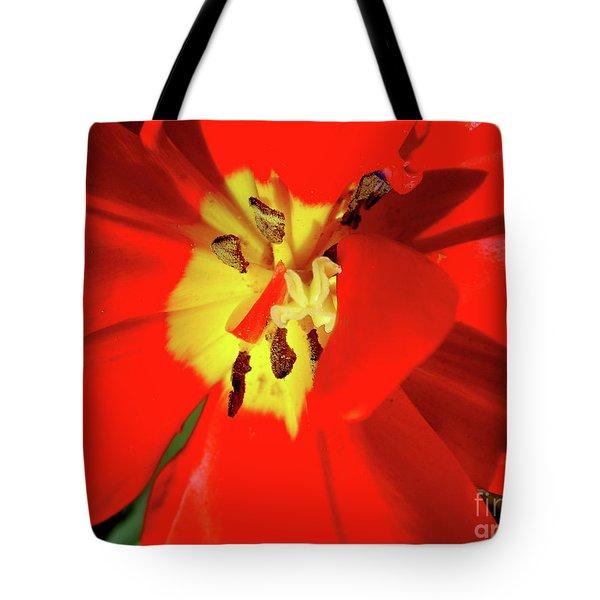 Red Tulip Tote Bag by Nina Ficur Feenan