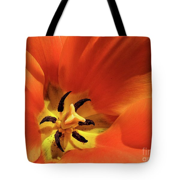 Tote Bag featuring the photograph Red Tulip by Susan Cole Kelly