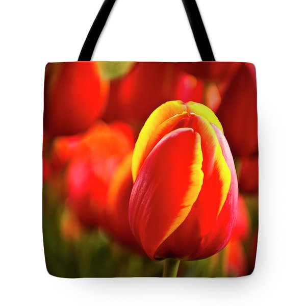 Red Tulip Tote Bag by Tamyra Ayles
