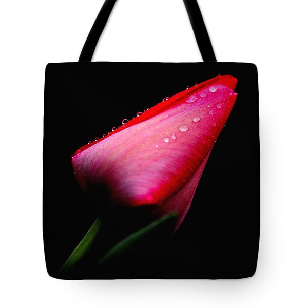 Red Tulip With Raindrops Tote Bag by Trina Ansel