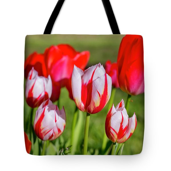 Tote Bag featuring the photograph Red Tulips by Dennis Bucklin