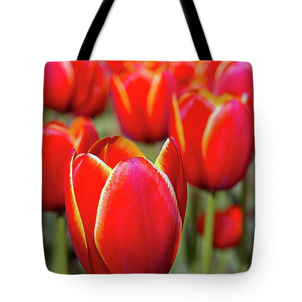 Red And Yellow Tulips I Tote Bag