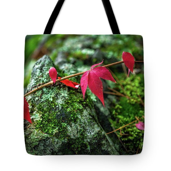 Tote Bag featuring the photograph Red Vine by Bill Pevlor