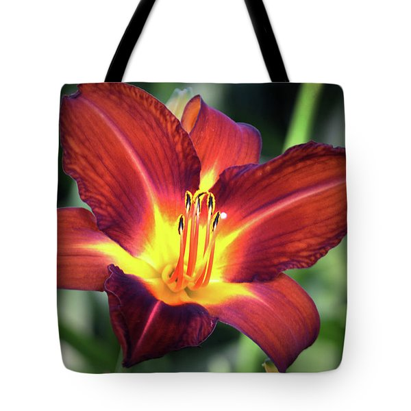 Tote Bag featuring the photograph Red Volunteer. by Terence Davis