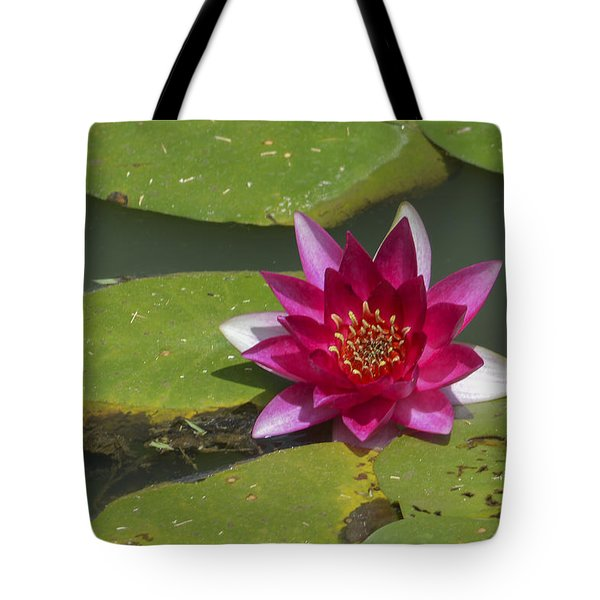 Red Water Lily Tote Bag by Linda Geiger