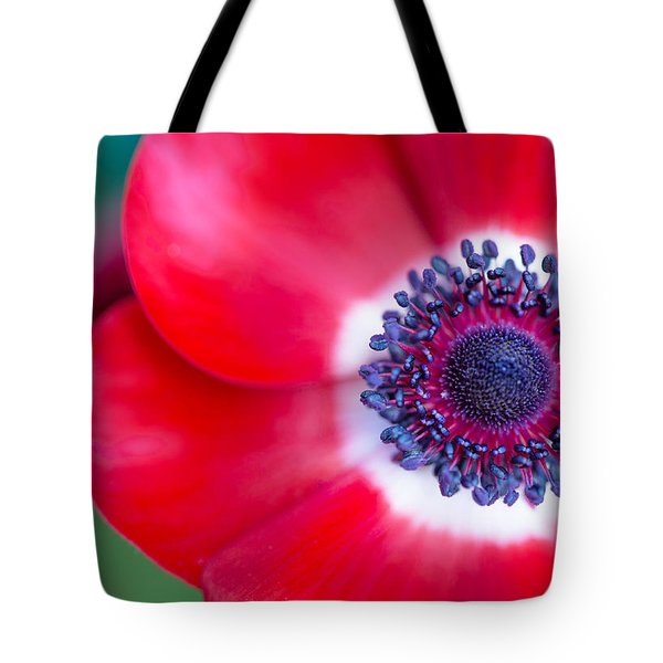 Red White Blue Anemone Tote Bag