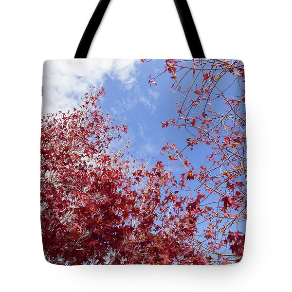 Tote Bag featuring the photograph Red White Blue Colors Of The Nature by Jingjits Photography