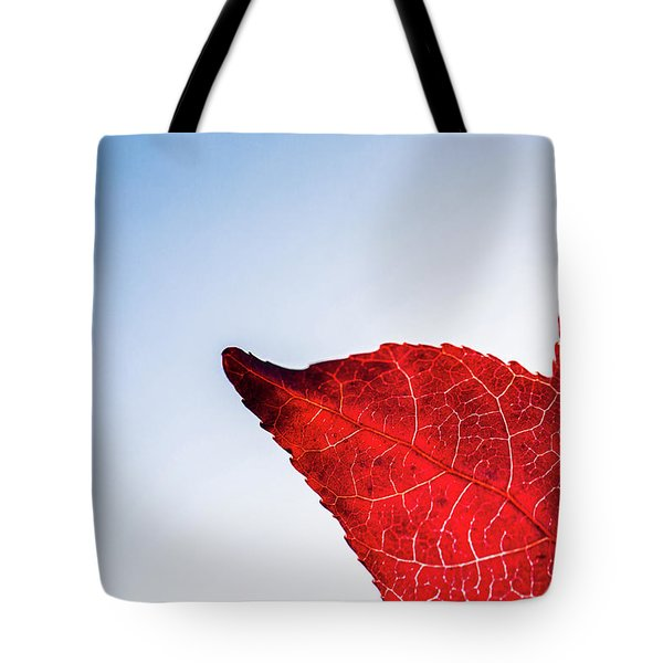 Tote Bag featuring the photograph Red White  Blue by Jingjits Photography
