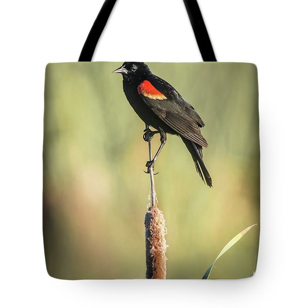 Tote Bag featuring the photograph Red-wing On Cattail by Robert Frederick
