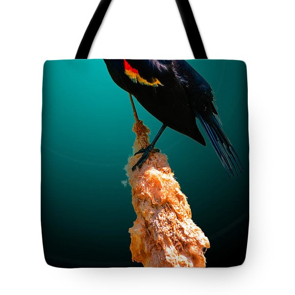 Tote Bag featuring the photograph Red Winged Blackbird 2 by Brian Stevens
