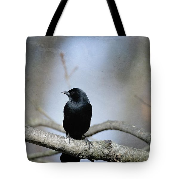 Red-winged Blackbird Tote Bag by Diane Giurco