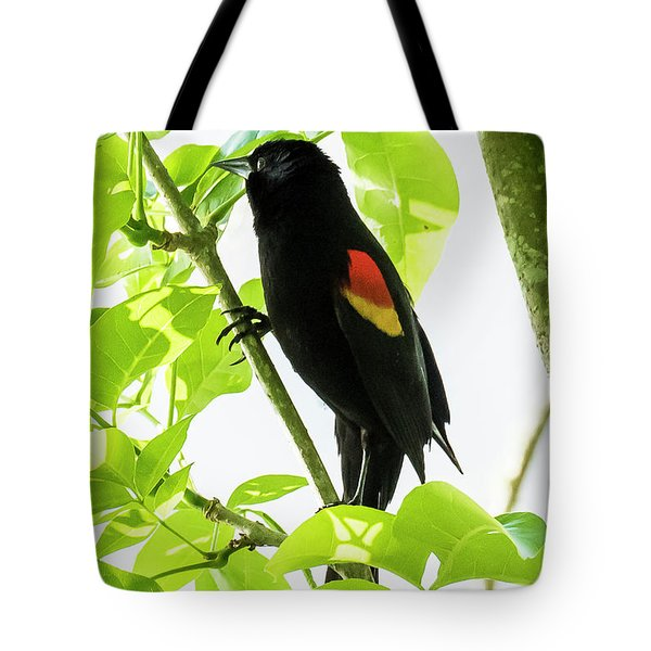 Tote Bag featuring the photograph Red-winged Blackbird by Michael D Miller