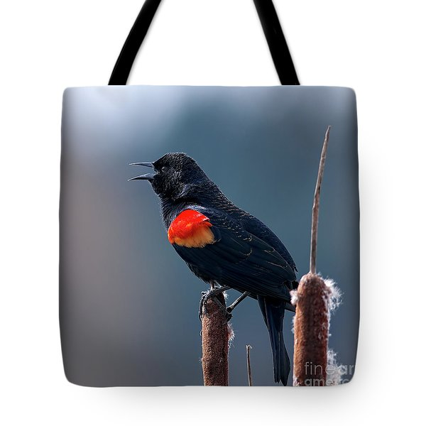 Tote Bag featuring the photograph Red-winged Blackbird Singing by Sharon Talson