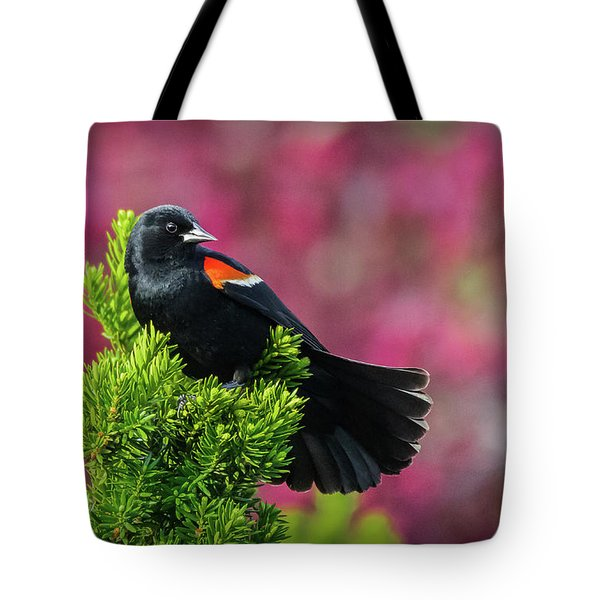 Red Winged Blackbird With Crabapple Blossoms Tote Bag