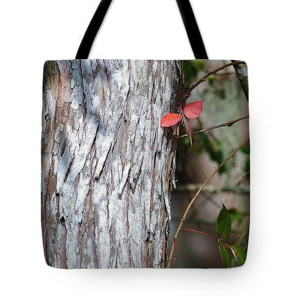 Red Winged Dragonfly Tote Bag