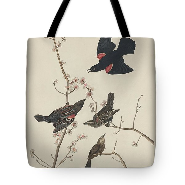 Red-winged Starling Tote Bag