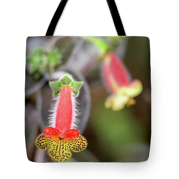 Red, Yellow And Furry  Tote Bag