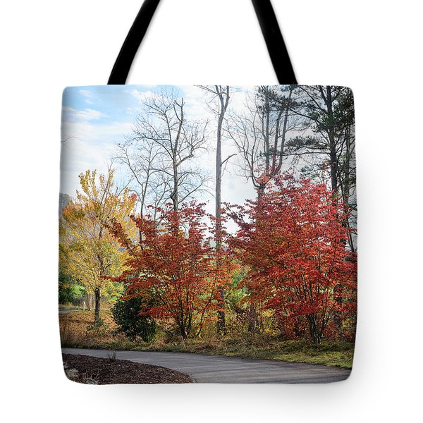 Tote Bag featuring the photograph Red Yellow Path by Claire Turner